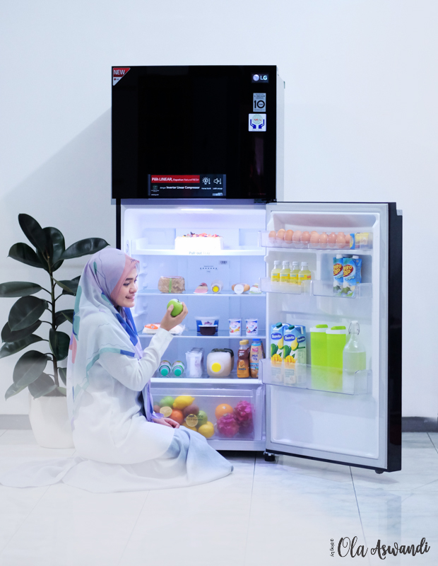 LG-Smart-Inverter-Refrigerator-6 Review Lemari Es LG Linear Top Freezer