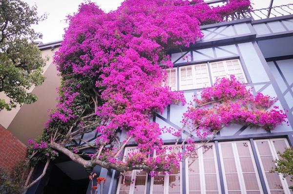 tumblr_nx5bqkjz8j1ta0hnbo1_1280 Tips Ngeblog 8: 10 Website Foto Gratis Yang Wajib Kamu Tahu!
