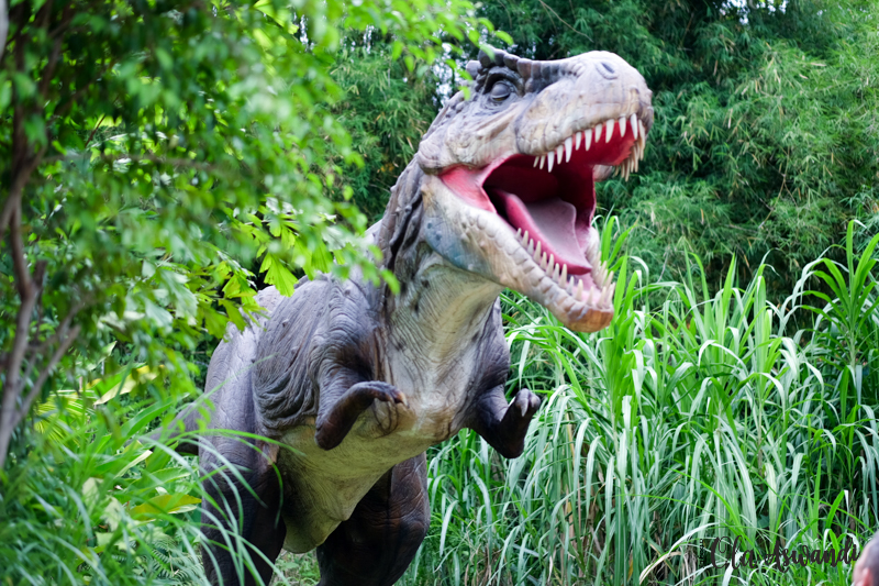 taman-legenda-84 Family Getaway: Taman Legenda dan Petualangan Dinosaurus