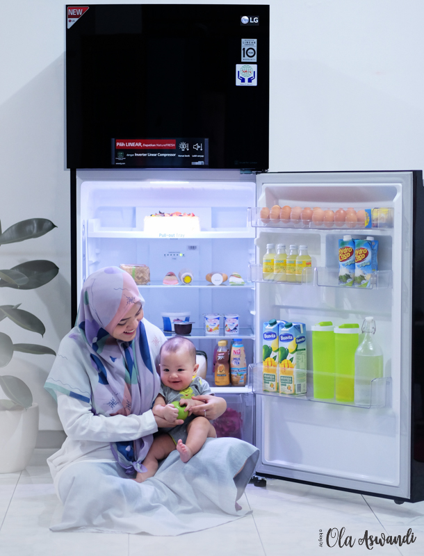 LG-Smart-Inverter-Refrigerator-14 Review Lemari Es LG Linear Top Freezer