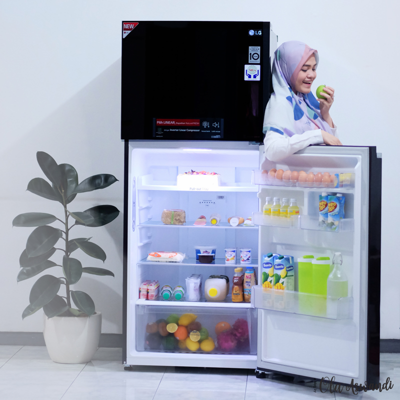 LG-Smart-Inverter-Refrigerator-5 Review Lemari Es LG Linear Top Freezer
