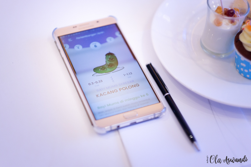 app-teman-bumil-126 Event: Launching Aplikasi Teman Bumil