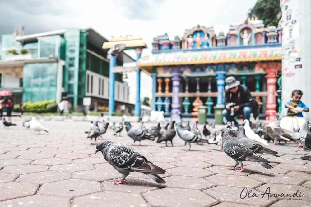 Malaysia-Dwidaya-Edited-54 5 Tujuan Wisata yang Wajib Dikunjungi di Malaysia (for 1st timer)